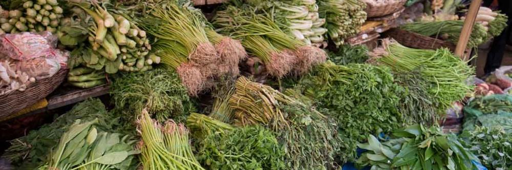柬埔寨蔬菜